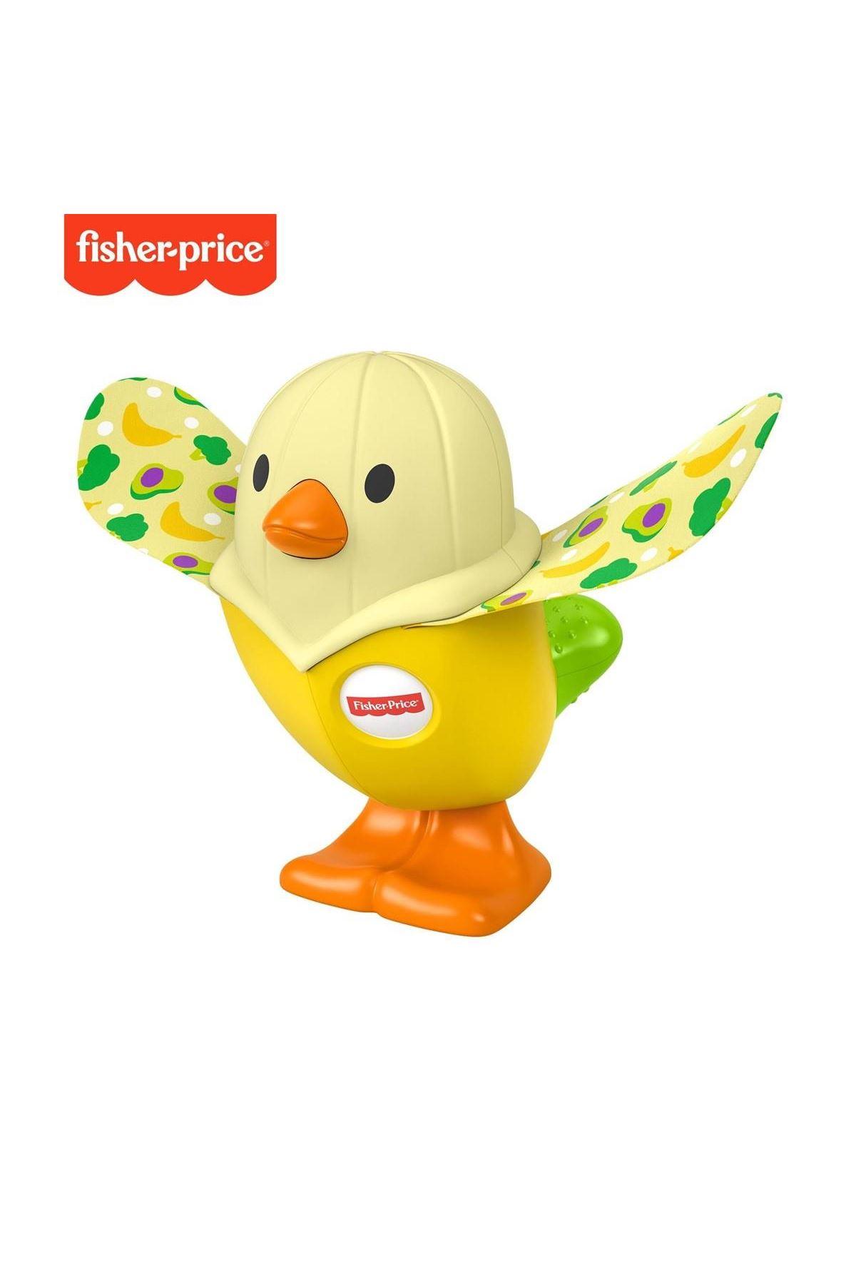 Fisher Price Sürprizli Oyuncaklar GJW22 GLD06